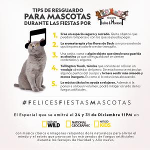NATIONAL GEOGRAPHIC PRESENTA LA 4a EDICIÓN DE FELICES FIESTAS, MASCOTAS, UN ESPECIAL DE PROGRAMACIÓN PARA CUIDAR A LOS ANIMALES DE LOS EFECTOS NEGATIVOS DE LA PIROTECNIA